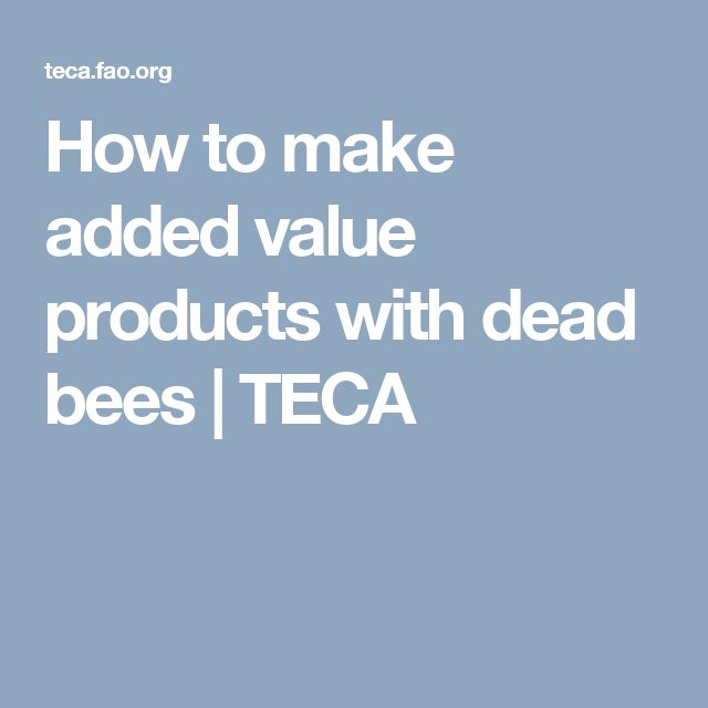How to make added value products with dead bees | TECA