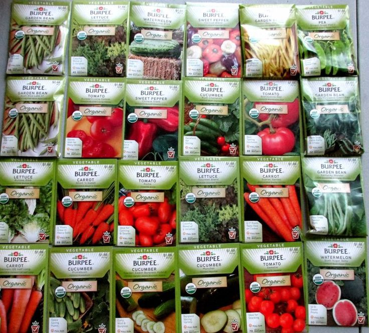 Burpee ORGANIC Seeds  (  Vegetable )    24 NEW Packets Packaged for 2015   $