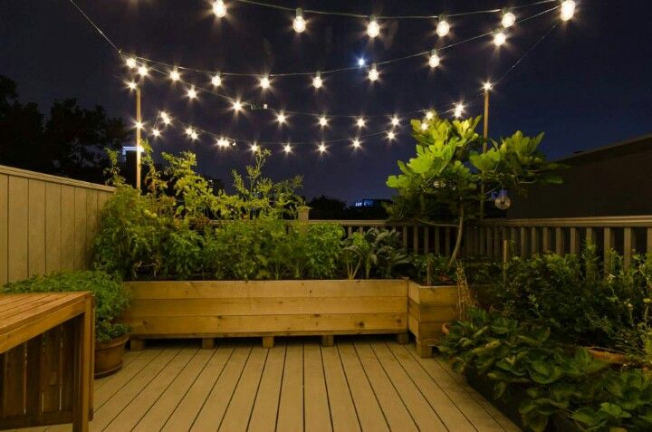 Urban deck garden with festoon-lights!