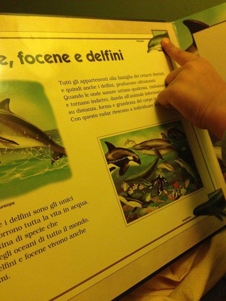 Amo Leggerti: Intervista a Sabina di Io con mio figlio - MammaMoglieDonna