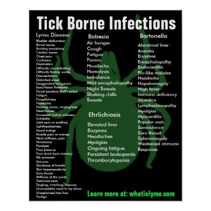 Tick Borne Infections Symptoms Educational Poster | Zazzle