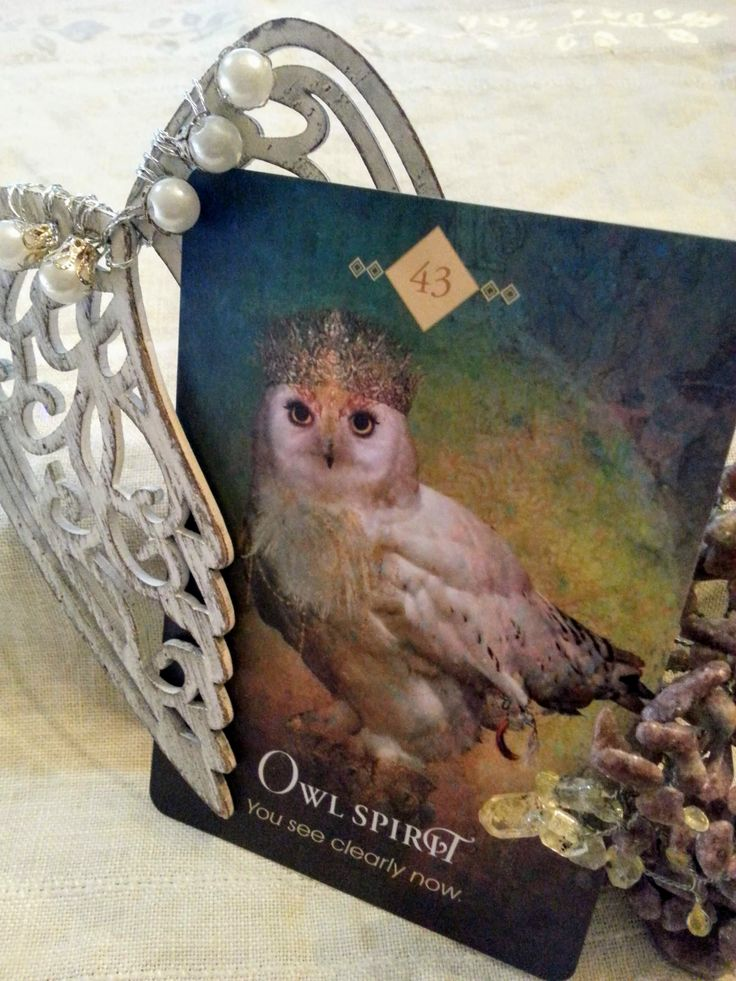 20 December Thursday, Owl Spirit *Wisdom gathered