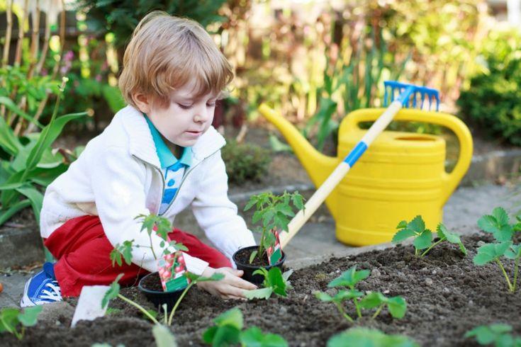 Den Kindern die Natur beibringen