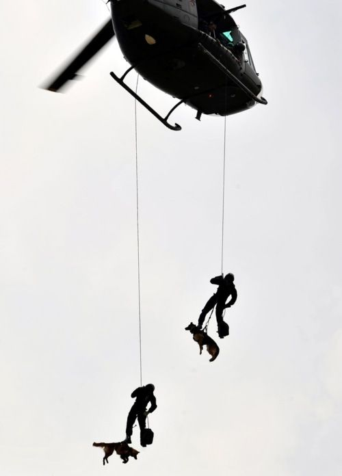 Dogs and soldiers from the Indonesian Army special forces group Kopassus drop from a helicopter during a joint anti-terror drill in Jakarta on Oct. 27. The drill took place before Indonesia hosted the Southeast Asian Games and the Association of Southeast Asian Nations in November.