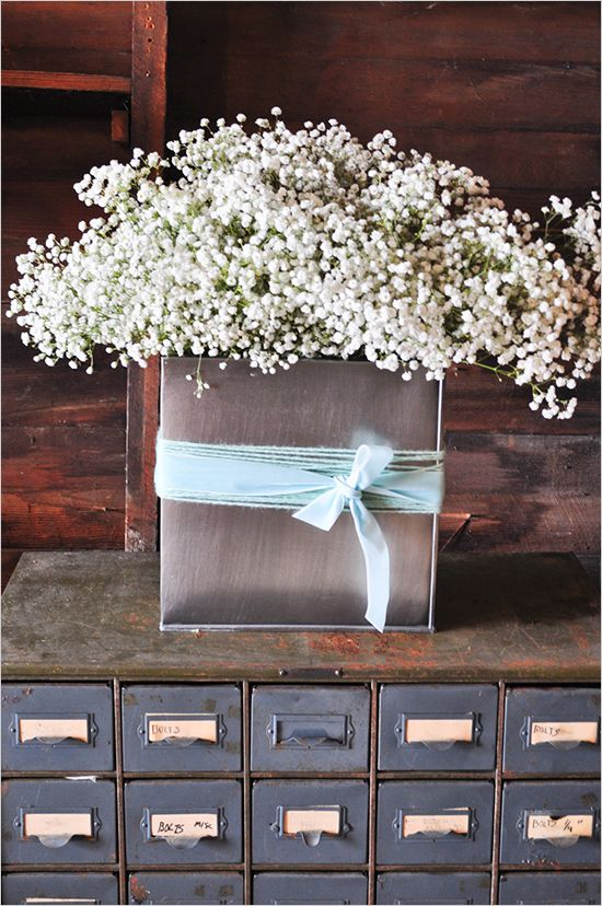 find this pin and more on gypsophila babys breath
