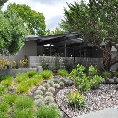 25 best ideas about fescue grass on pinterest sweet for Ornamental grasses landscape design ideas