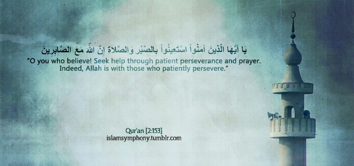 Quotes About Seeking Help: 105 Best Beautiful Islam Images On Pinterest