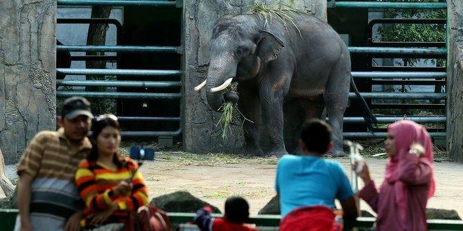 Persatuan Kebun Binatang Seluruh Indonesia