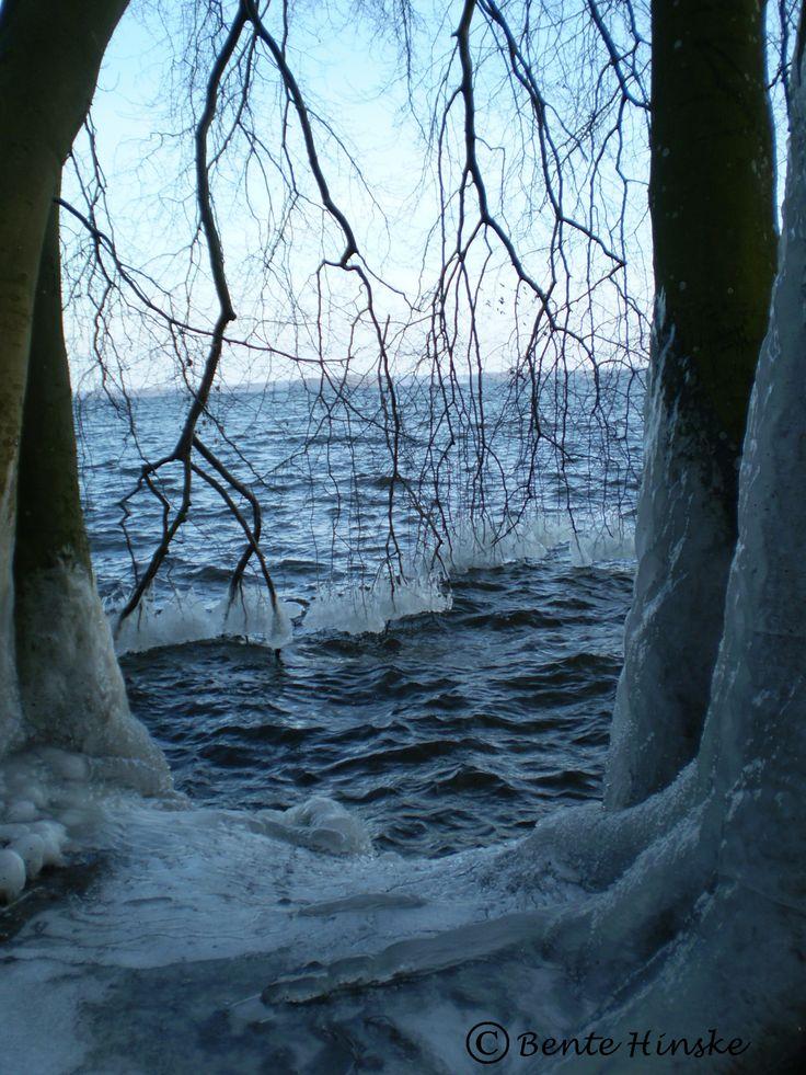 Hält der WInter erst Einzug ein jeder weiß, sind die Bäche gefroren und die Wege voll EIs.