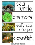 Fantastic site for printable word wall cards for a lot of themes! FREE