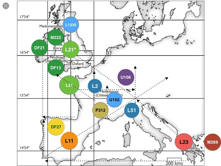 Genetic history of the British Isles - Wikipedia