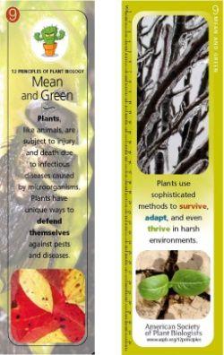 Marcapáginas. 10 Principios de la Biología de las Plantas: Autodefensa.
