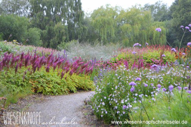 Millennium Garden, designed by Piet Oudolf mit Astilbe Purpurlanze und Verbena.
