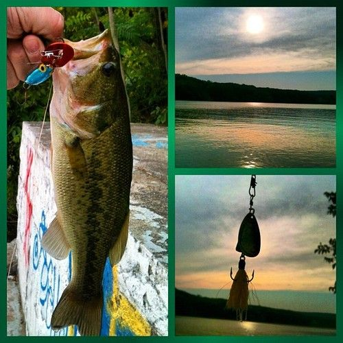 19 best fishing images on pinterest fishing stuff for Ice fishing for bass