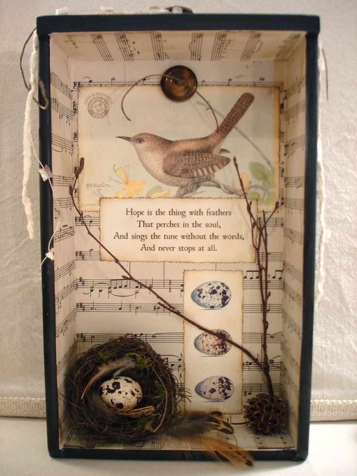 An assemblage from The Feathered Nest   http://the-feathered-nest.blogspot.com/search/label/Birds%20nest%20assemblage