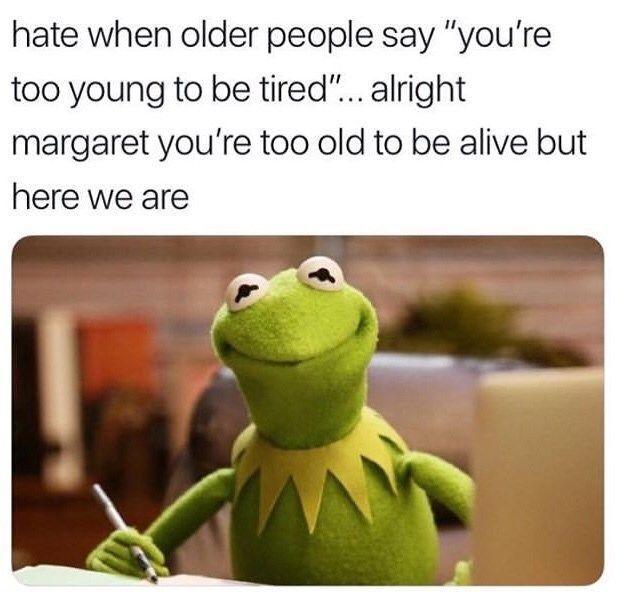 Pin On Memes