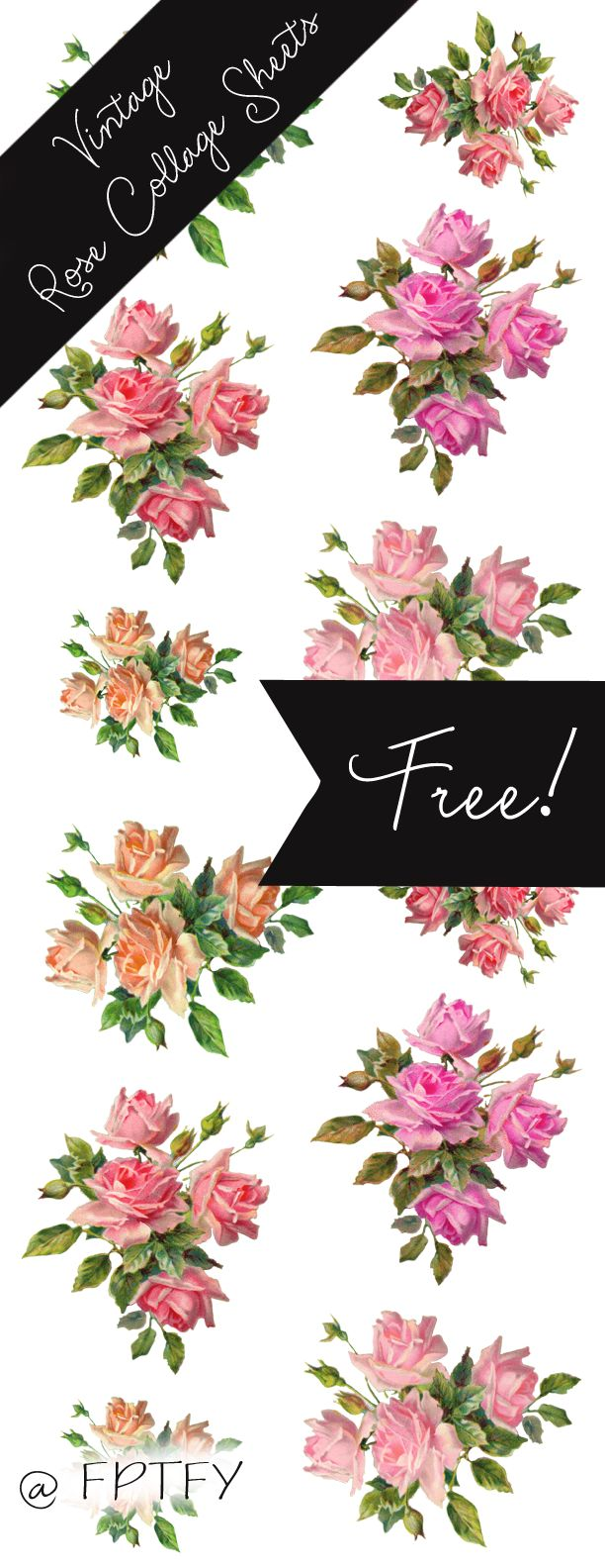 Gorgeous -Stock Vintage Rose Images - Free Pretty Things For You