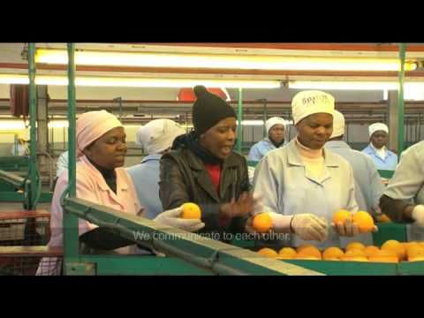 The Fruits of Fairtrade in South Africa