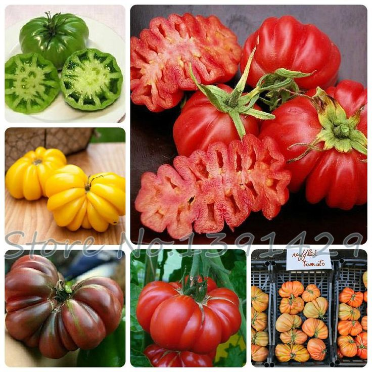 [Visit to Buy] Vegetables seeds Tomato 'Marmande' RARE Seeds - 100 TOP Quality Seeds, household gardening DIY, free shipping! #Advertisement