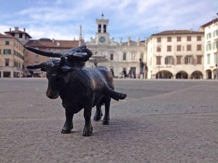 Enrico Franchi-Transumanza-Udine-Italia