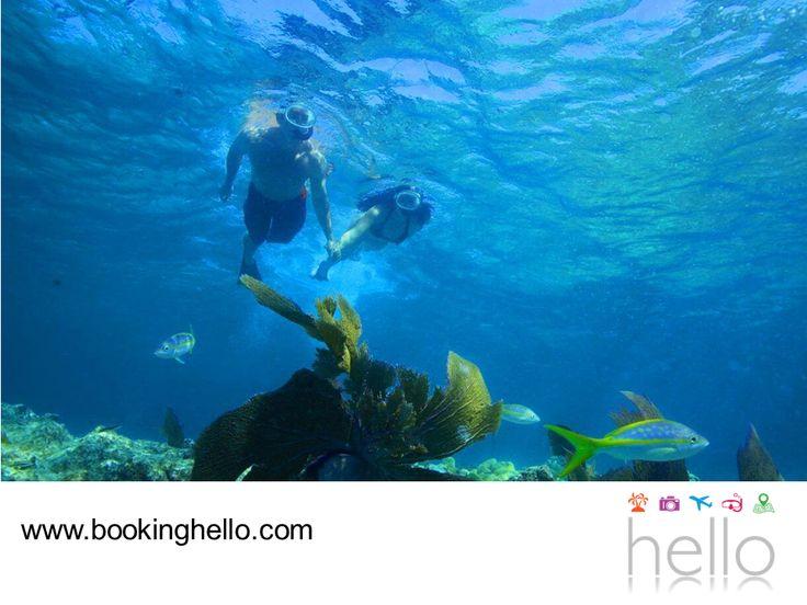 VIAJES EN PAREJA. El snorkeling es una de las mejores formas de sorprenderse con la belleza que ofrecen las playas del Caribe mexicano. Gracias a esta actividad, los turistas tienen la oportunidad de contemplar la fauna marina y conocer la importancia de preservar el ecosistema. En Booking Hello te invitamos a adquirir alguno de nuestros packs all inclusive, para escaparte con tu pareja a este destino y disfrutar de unas vacaciones inigualables. #viajesenparejalcaribe