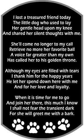 A Sad Message Loss Of A Fur Baby Pet Loss Grief Pets Dog Poems