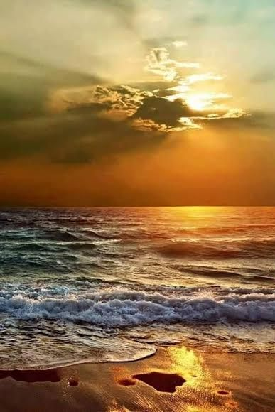 Ocean sunset   | nature | | sunrise |  | sunset | #nature  https://biopop.com/