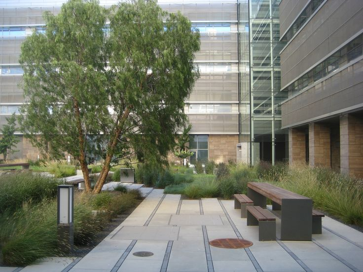 San francisco mission bay page 64 skyscraperpage for Courtyard architecture design