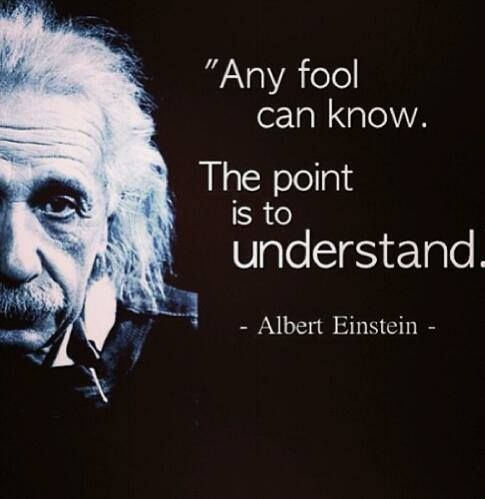 Any fool can know. The point is to understand. ~Albert Einstein