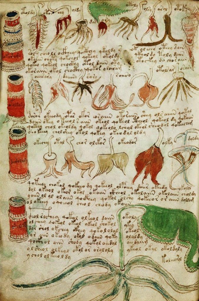 Manuscrito Voynich. El libro indescifrable