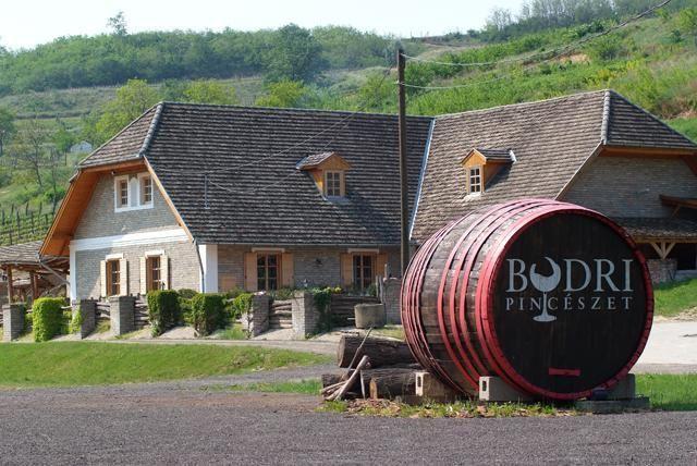 Szekszard winery--Google Image Result for http://www.utisugo.hu/_Images/bortura/pannon-borregio/szekszardi-borvidek/001112888_szekszard_4.jpg.jpg_orig.jpg