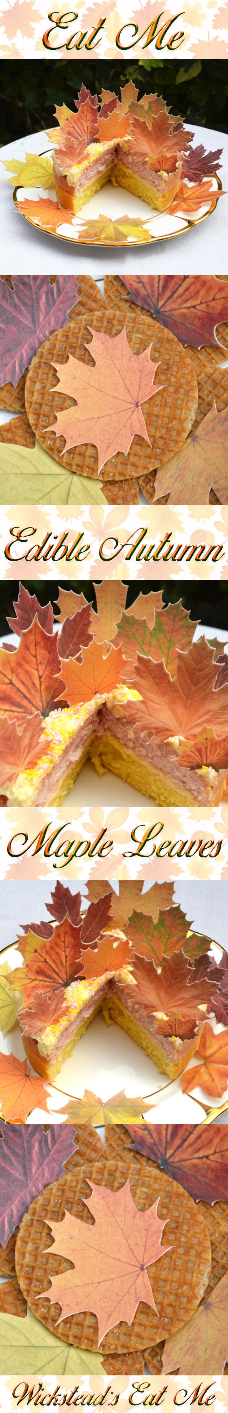 Edible Maple Autumn Fall Leaves Perfect for Autumn Fall Weddings www.WicksteadsEatMe.etsy.com