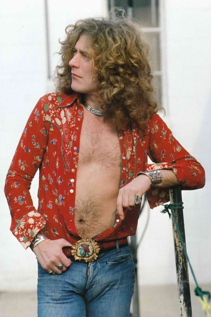 Led Zeppelin - Page 5 11f11160c38e749806f18aac5d813944