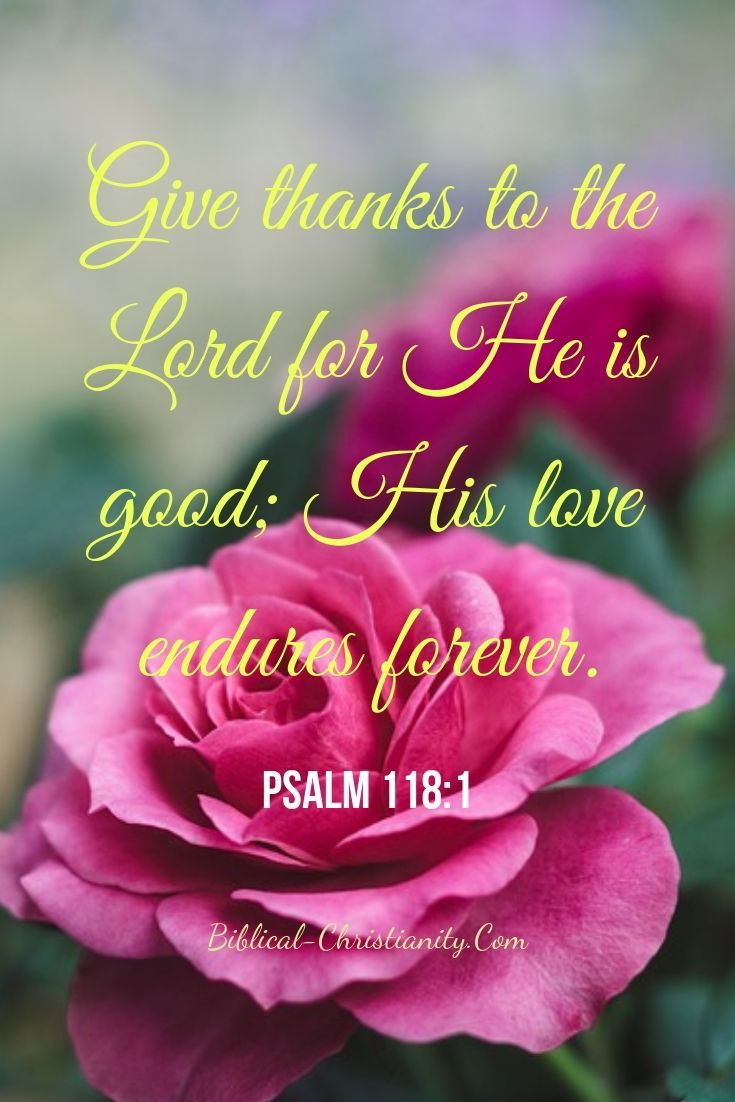 Give Thanks to the LORD for He is Good | Psalms, Thanksgiving songs, Psalm 100