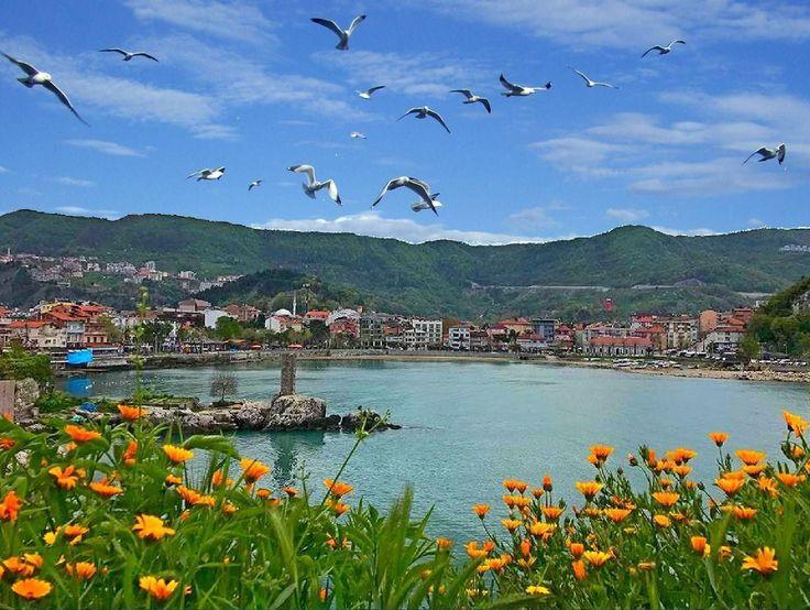 Amasra.Çiçeklerin açtığı nisan ayında.Martıların çığlıkları altında,Boztepe'den Küçük Liman manzarası...