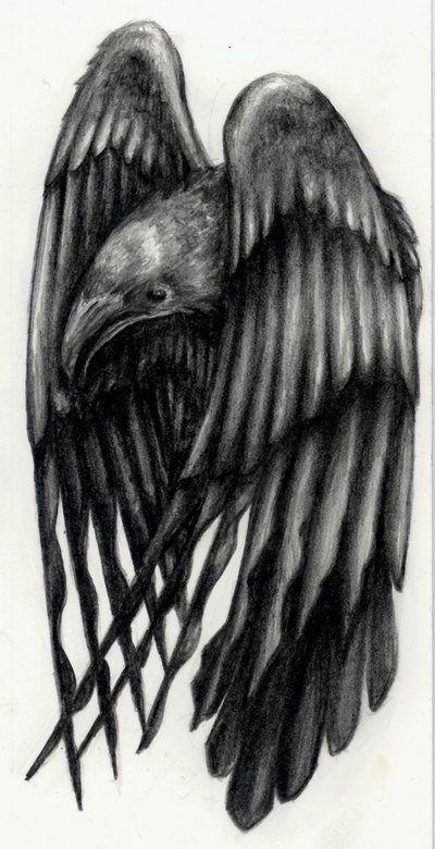 Raven Tattoo Designs | Raven Tattoo Designs: Nice Raven Tattoo Designs Pictures
