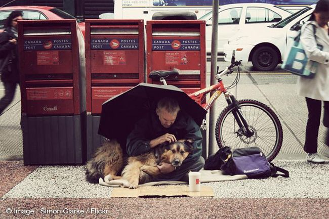 The unconditional love between dogs and their owners l Photo Simon Clarke l #homeless #dogs #love