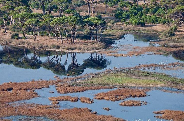 Εθνικό Πάρκο Στροφυλιάς - Κοτυχίου: Ένα μοναδικό οικοσύστημα απαράμιλλης αισθητικής
