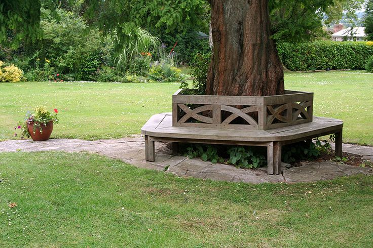 Tree Bench in Green Oak