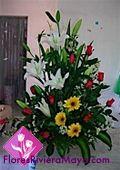 Floreria en Toluca | Envia flores a domicilio