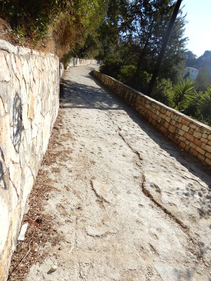 The walk to Parga town from Valtos beach    #Greece #Greek #Epirus #tree  #Perveza #vacation #travel #Mediterranean