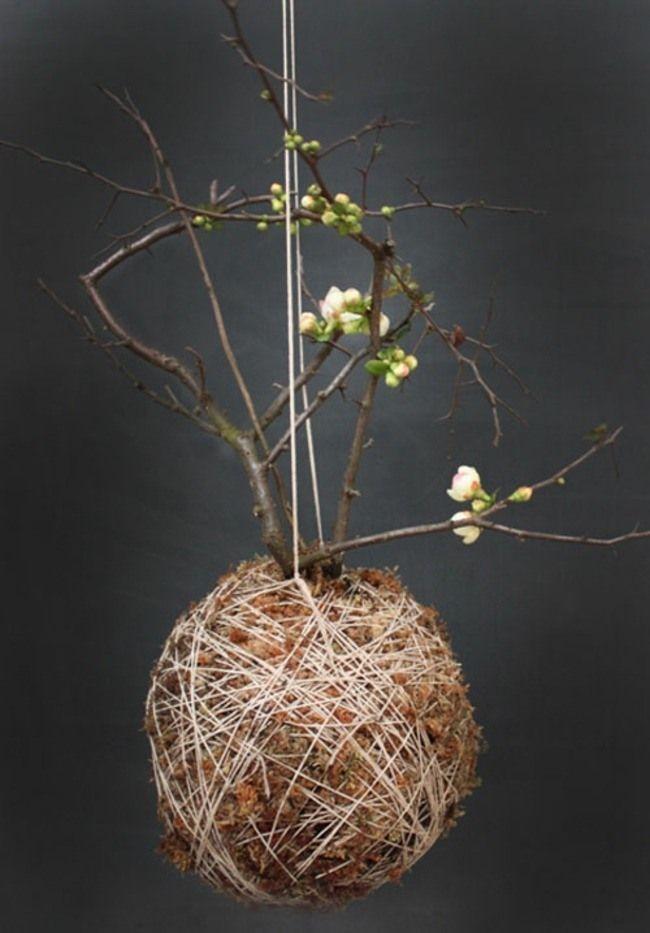 Kokedama - pot à fleurs en mousse et ficelle pour votre jardin suspendu