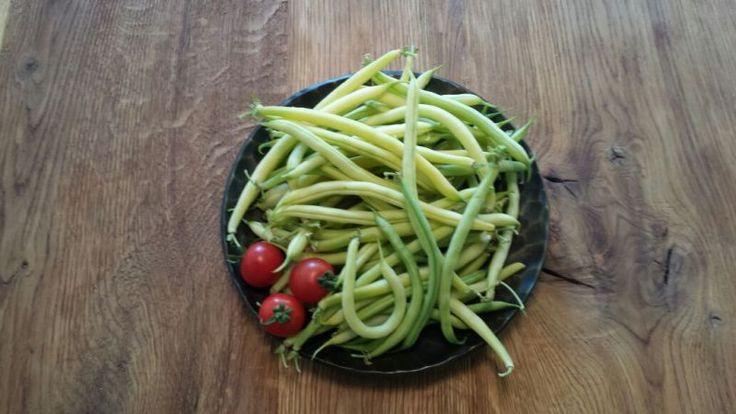 Fasolea fideluta din gradina Tomatina!  Foarte gustoasa si sanatoasa , crescuta fara adaos de substante daunatoare sanatatii.  Fasolea verde fideluta este culeasa in ziua livrarii.