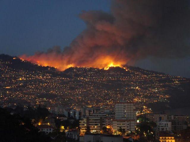 DIGA NÃO À INÉRCIA: Incêndios: Criminosos à Solta
