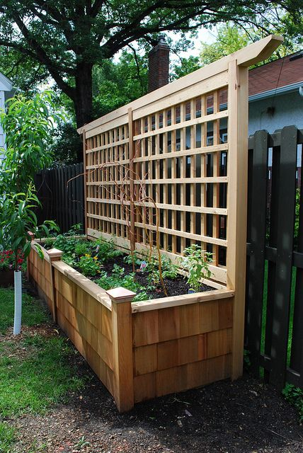 design tips and ideas on landscaping a small yard could grow veggies in the front and clematis at the back of the planter to screen neighbours