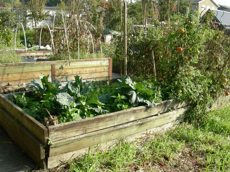80 Best Images About Unique Raised Beds On Pinterest Gardens Raised Beds And Planters