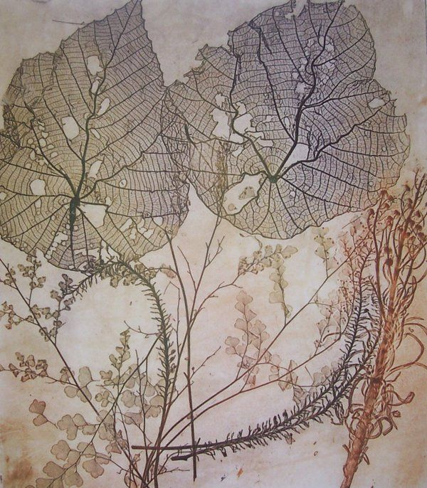 Nature Etching by Jet James                                                                                                                                                                                 More