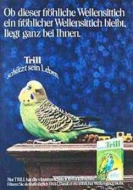 Werbung /Bilder 1971 ... machte voll das schlechte Gewissen. :-) Wer will schon einen unglücklichen Wellensittich!
