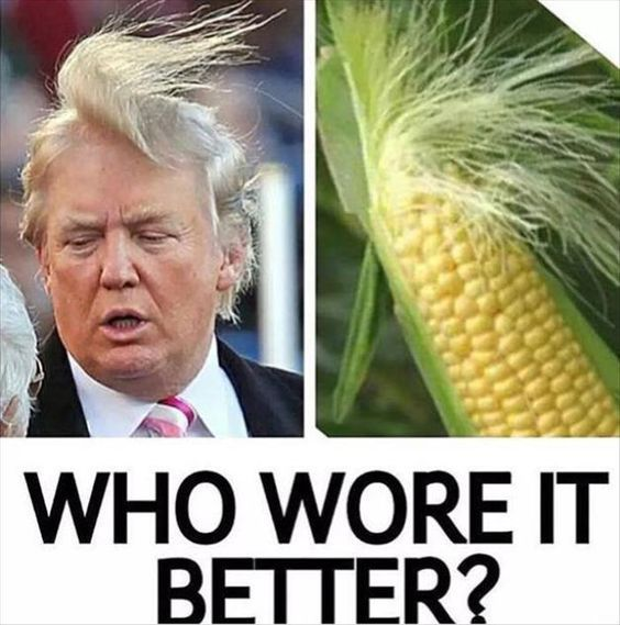 Donald Trump hair is a reason to laugh for a lot of peoples in the world, this image give us one mor...