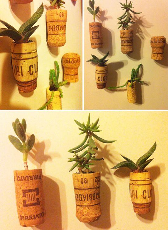 10 best idee su giardino di piante grasse su pinterest - Vasi con piante grasse ...